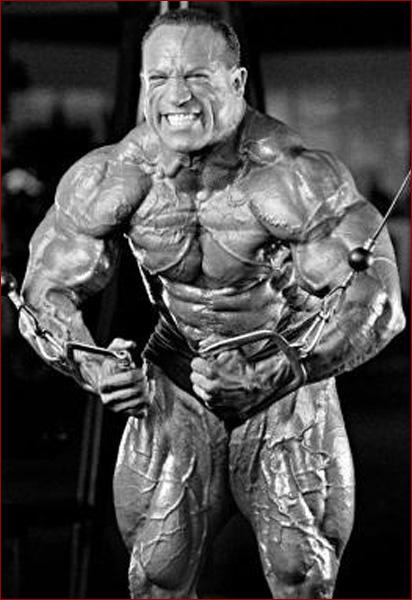 halotestin steroid wiki